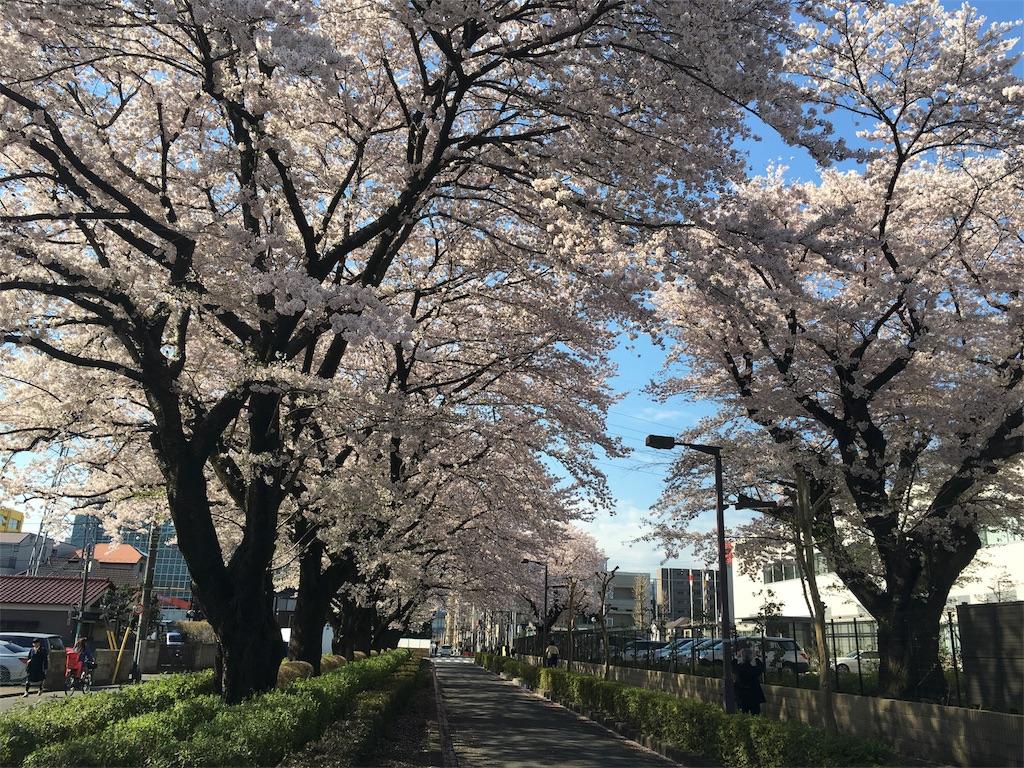 f:id:yakuwari:20170419073838j:image