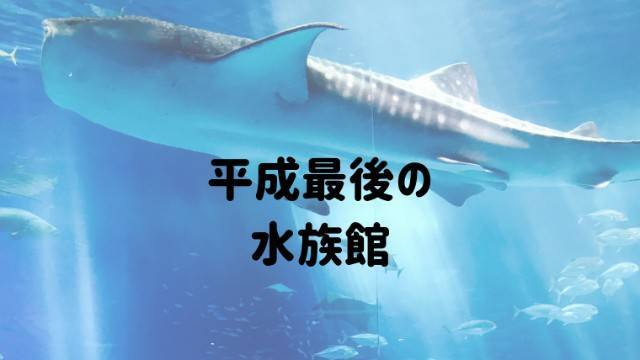 f:id:yakuzari:20190430222749j:plain