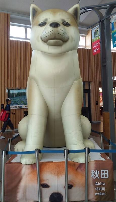 秋田駅の秋田犬