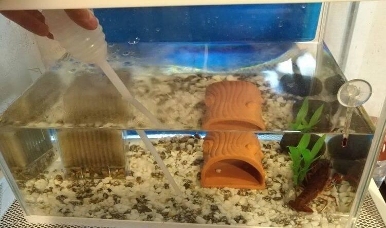 水槽の底の汚れ物を根気よく吸っていきます