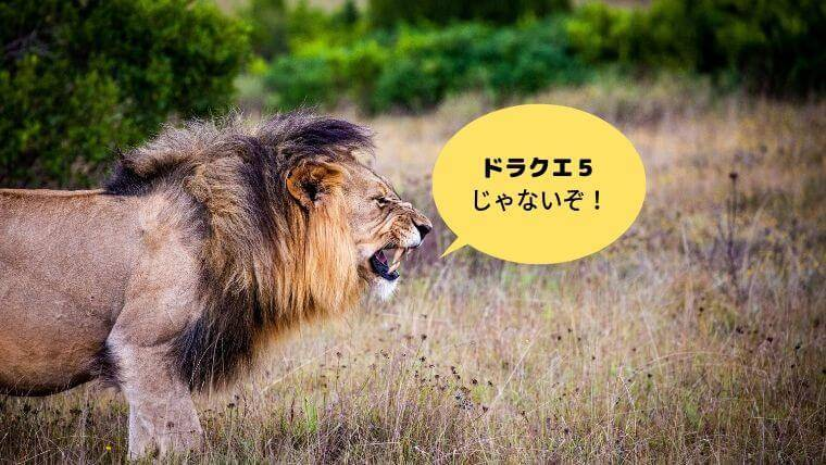ライオンキングの感想がドラクエ5だった話し