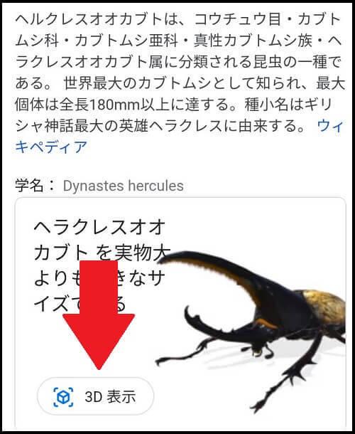 Googleの「ヘラクレスオオカブト」検索画面