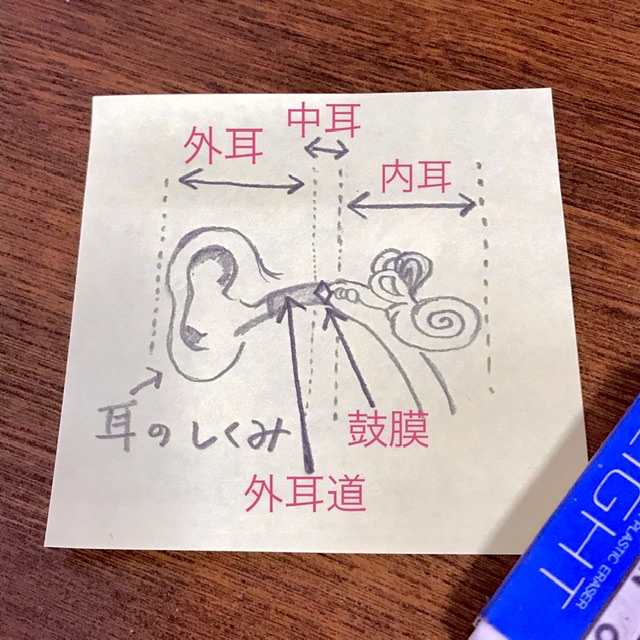 f:id:yakuzenntonn:20210426211024j:plain