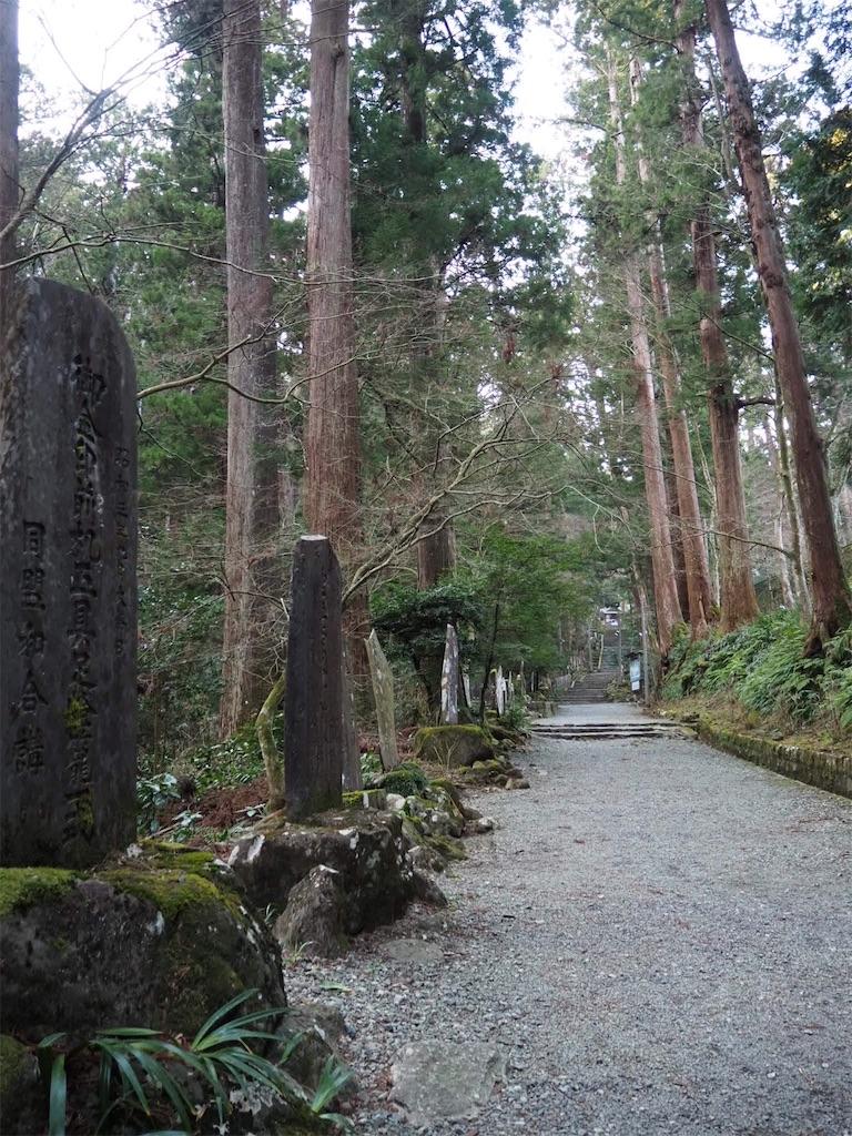 f:id:yama-aruki:20190224152109j:image