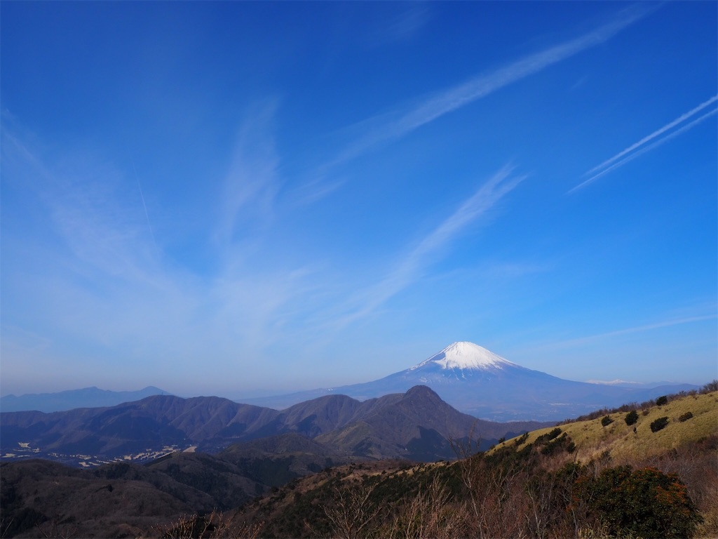 f:id:yama-aruki:20190224152317j:image