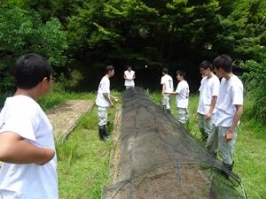 f:id:yama-gaku:20160714120353j:plain