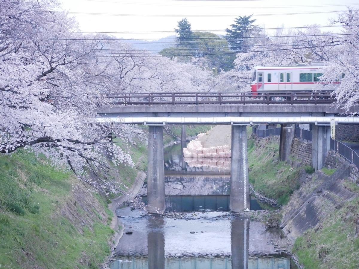 f:id:yama300gifu:20210127202624j:plain