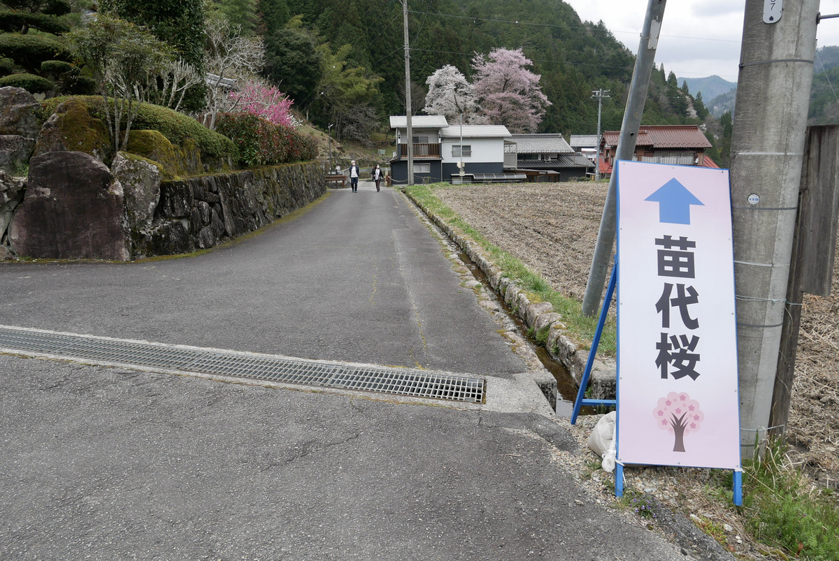 f:id:yama300gifu:20210404093414j:plain