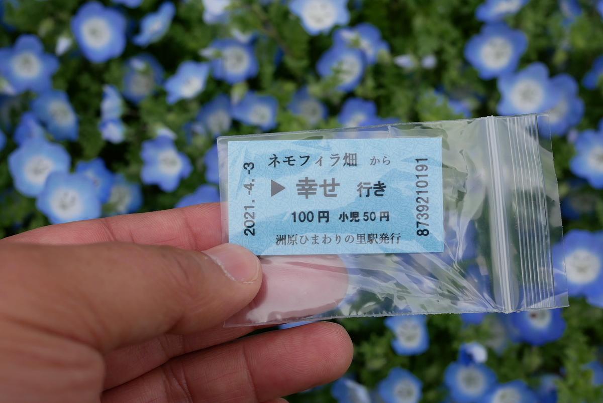 f:id:yama300gifu:20210405054332j:plain