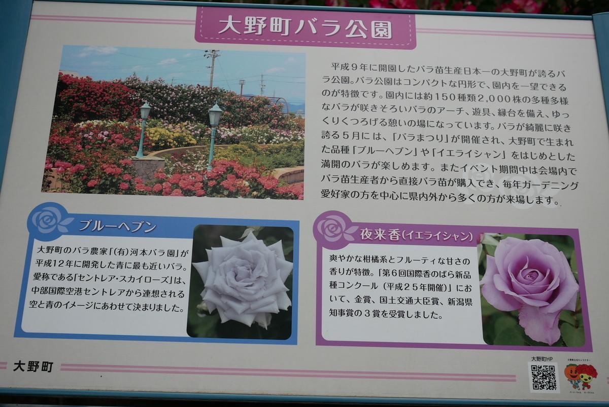 f:id:yama300gifu:20210516061855j:plain