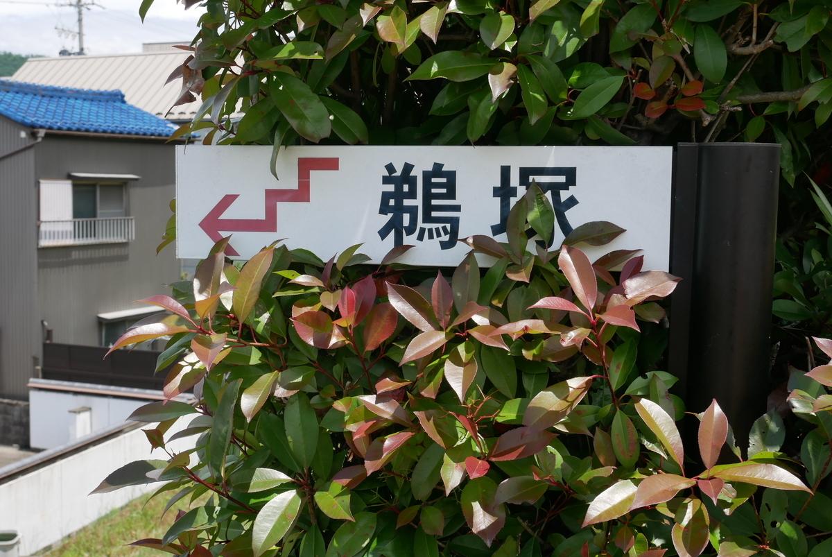 f:id:yama300gifu:20210525070938j:plain