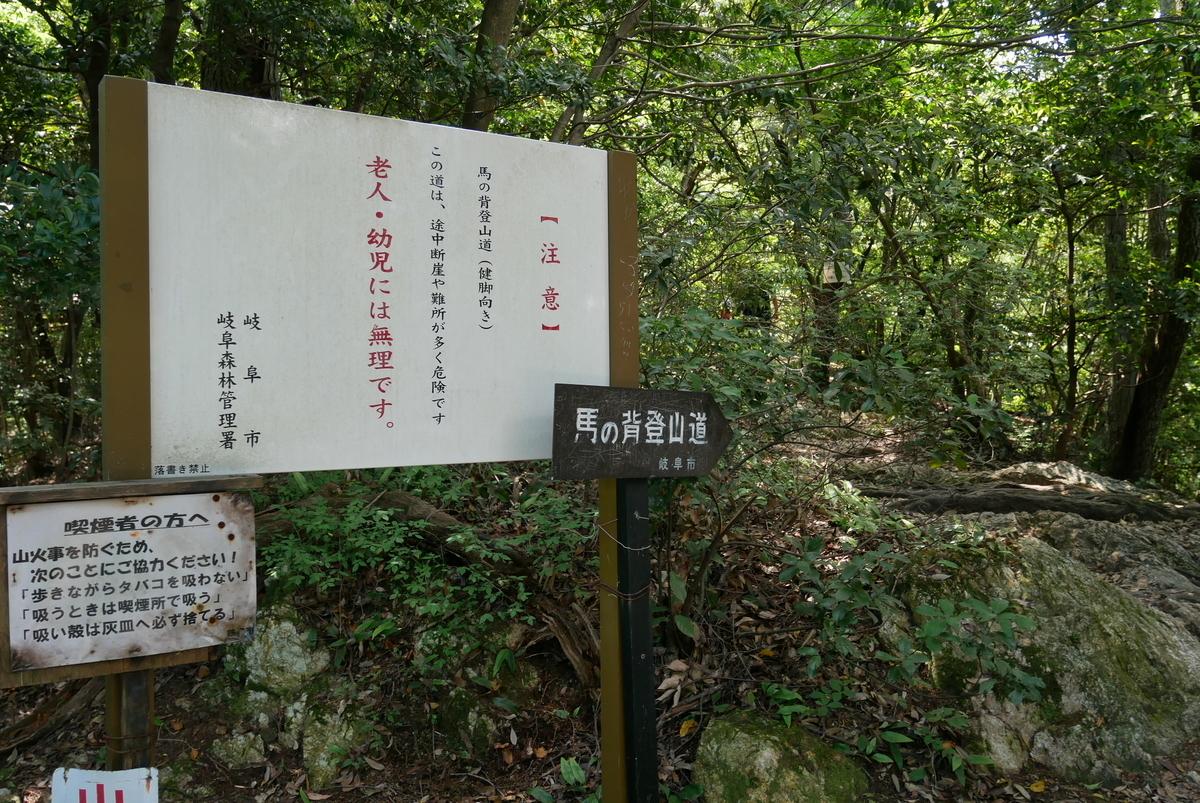 f:id:yama300gifu:20210603064515j:plain