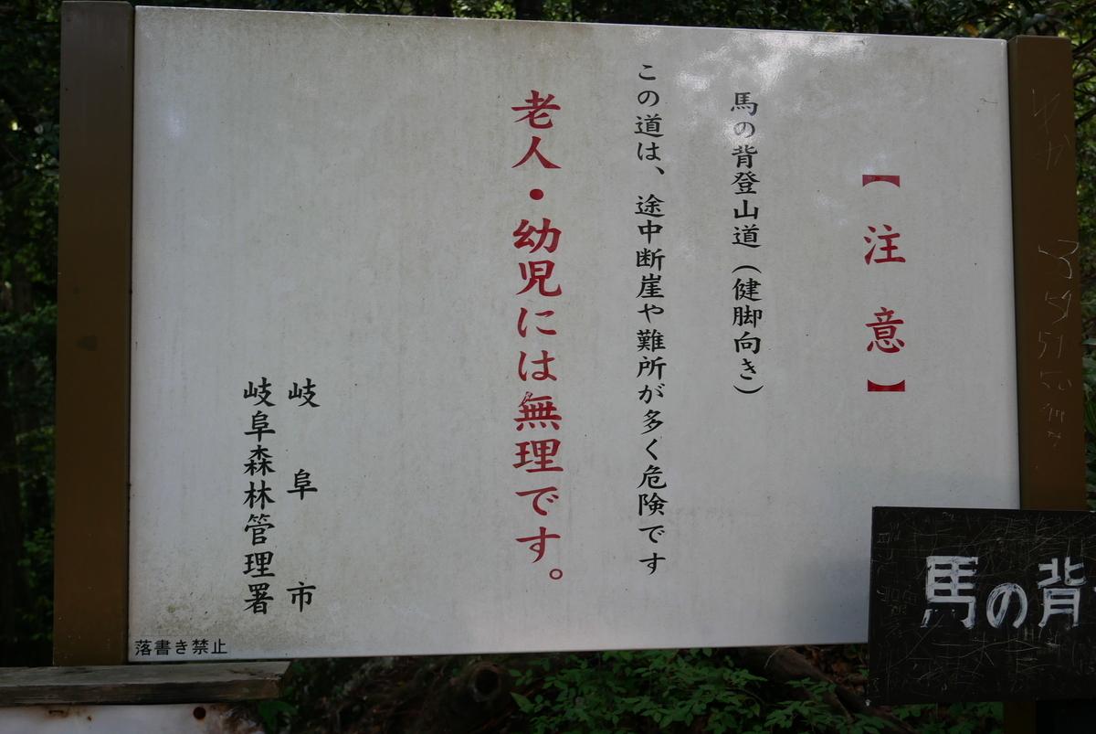 f:id:yama300gifu:20210603064638j:plain