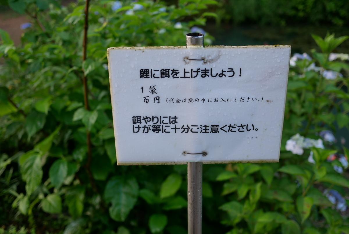 f:id:yama300gifu:20210621060548j:plain