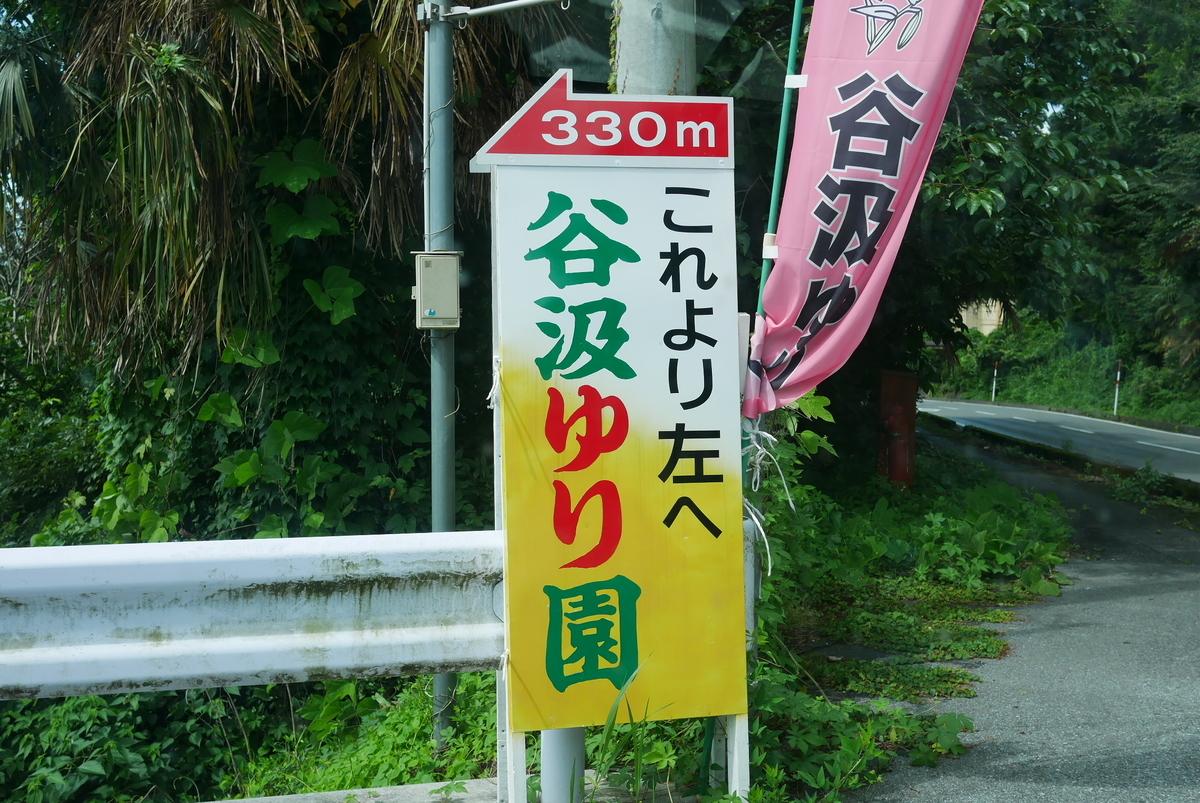 f:id:yama300gifu:20210703150229j:plain