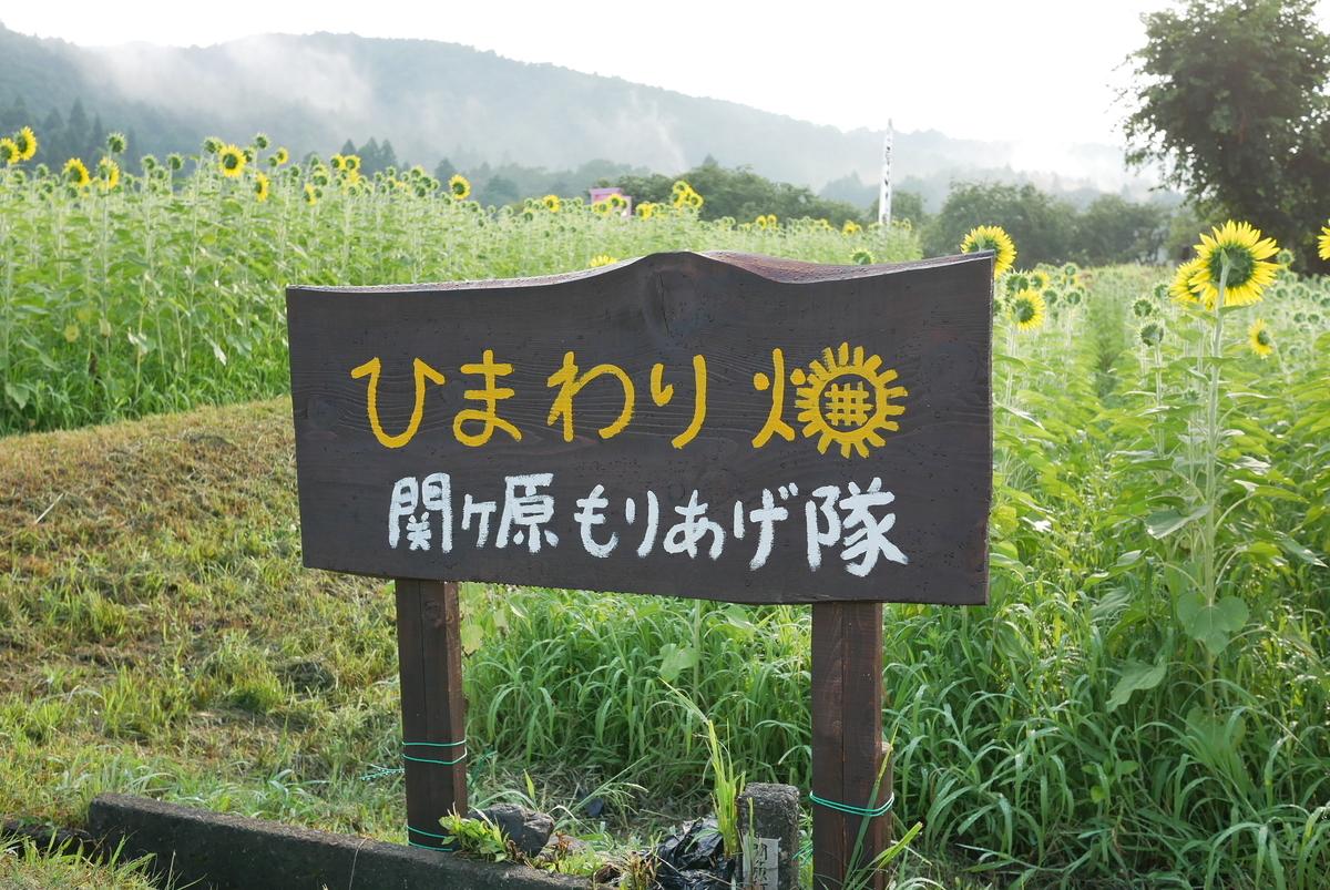 f:id:yama300gifu:20210801203359j:plain
