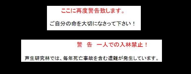f:id:yama31183:20200902231628j:plain