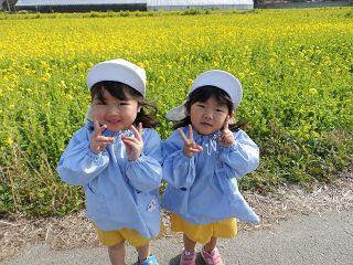 f:id:yamabiko_sensei:20200205145758j:plain