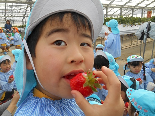 f:id:yamabiko_sensei:20200212120441j:plain