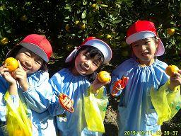f:id:yamabiko_sensei:20201026144622j:plain