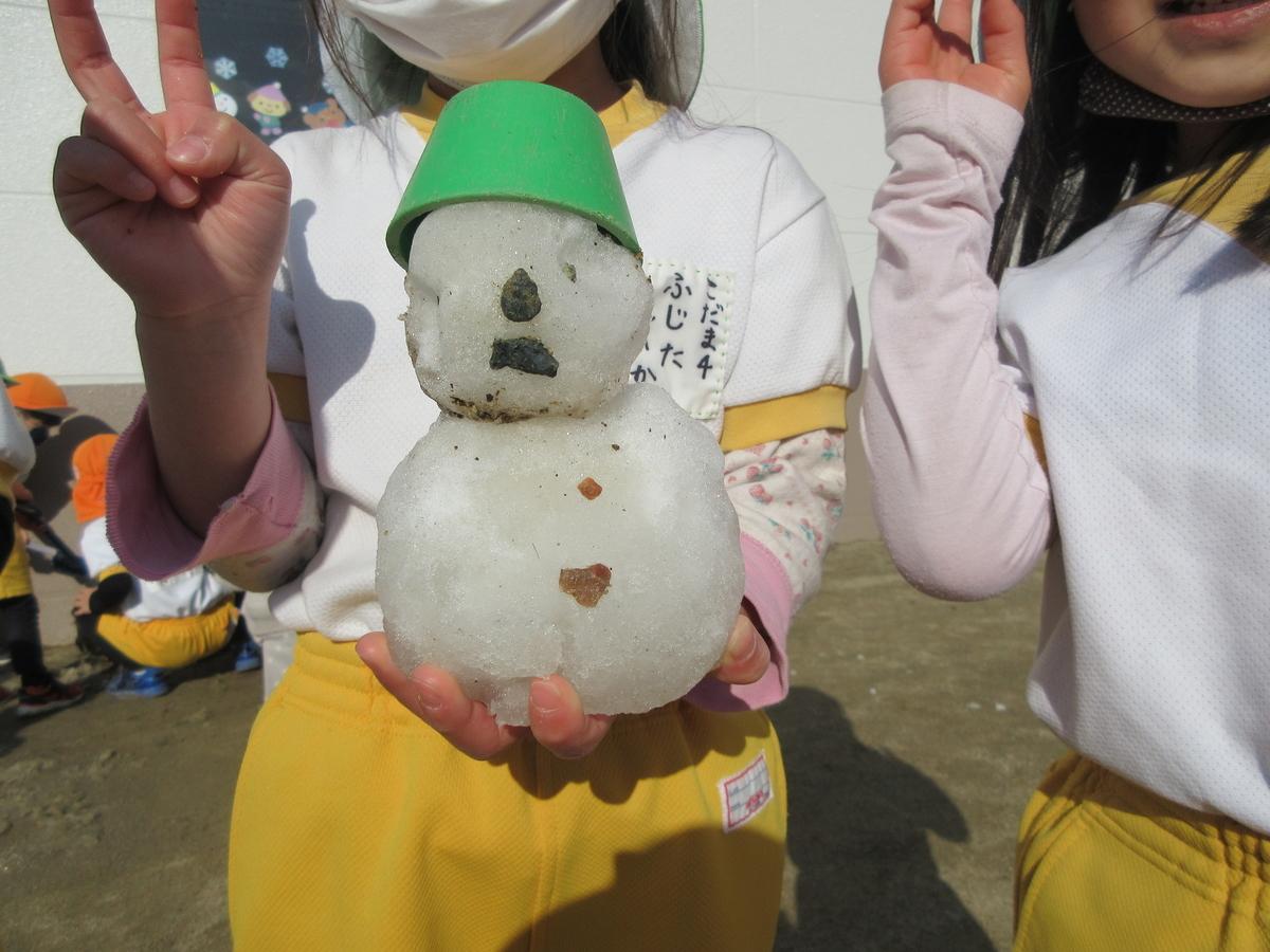 f:id:yamabiko_sensei:20210219150503j:plain