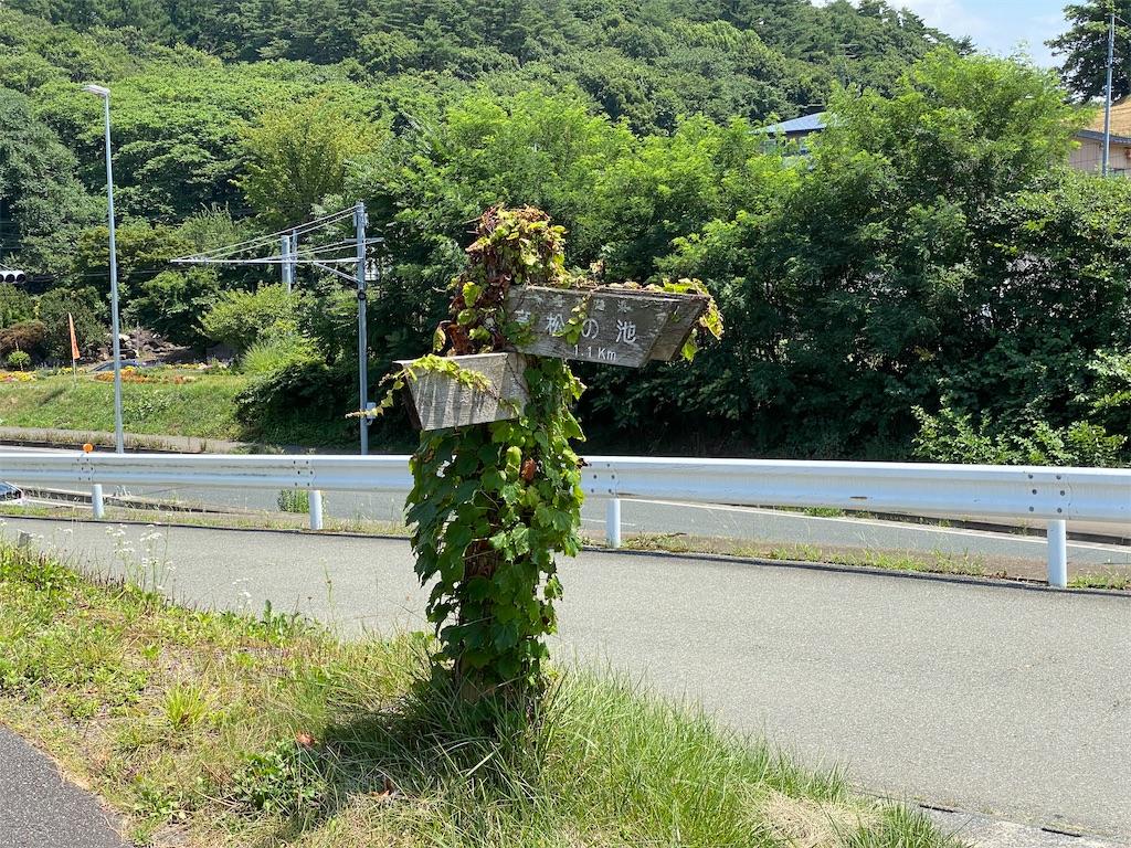 f:id:yamabuki61gou:20210724145621j:image