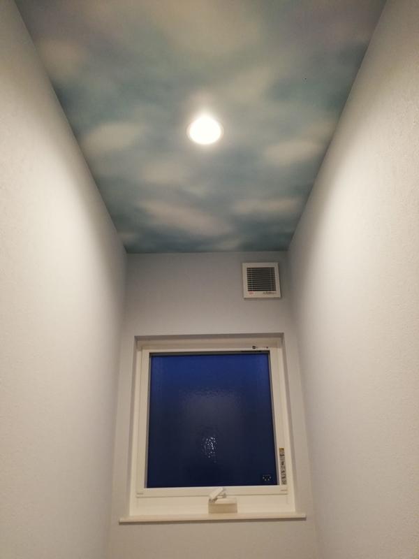 トイレ天井壁紙