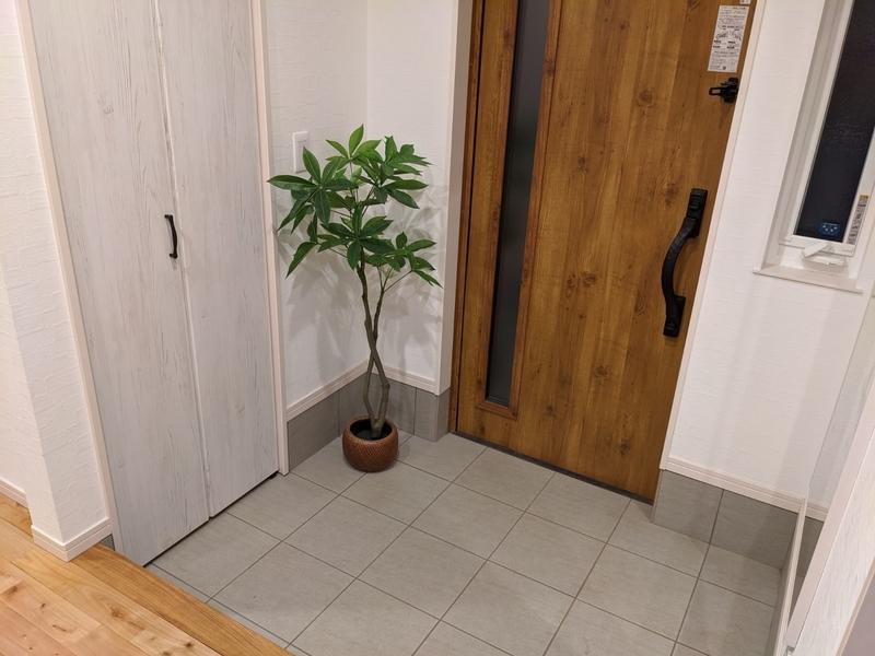 玄関に植物