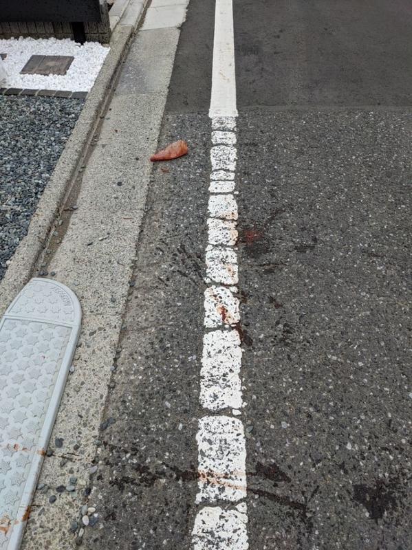 道路の落下物