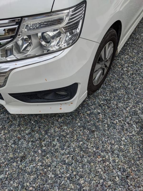 車の左側の汚れ