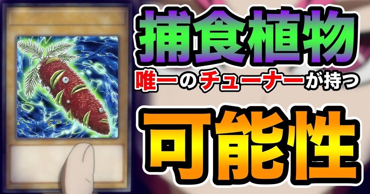 f:id:yamachi_9rakura:20210307042925j:plain
