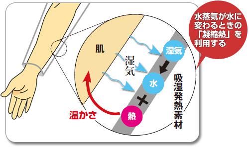 f:id:yamada0221:20181219152843j:plain