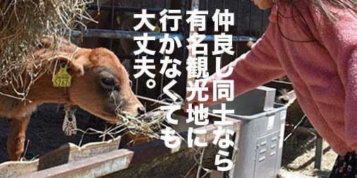 f:id:yamada0221:20190424171203j:plain