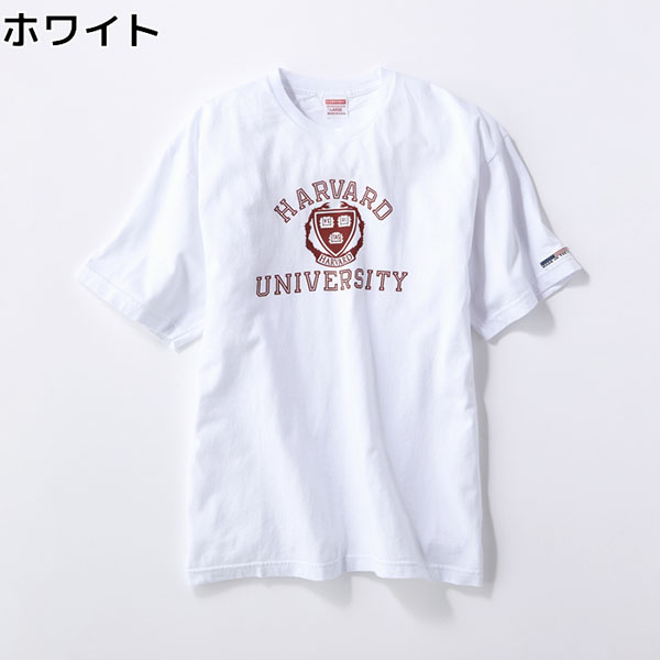 f:id:yamada0221:20200518214857j:plain