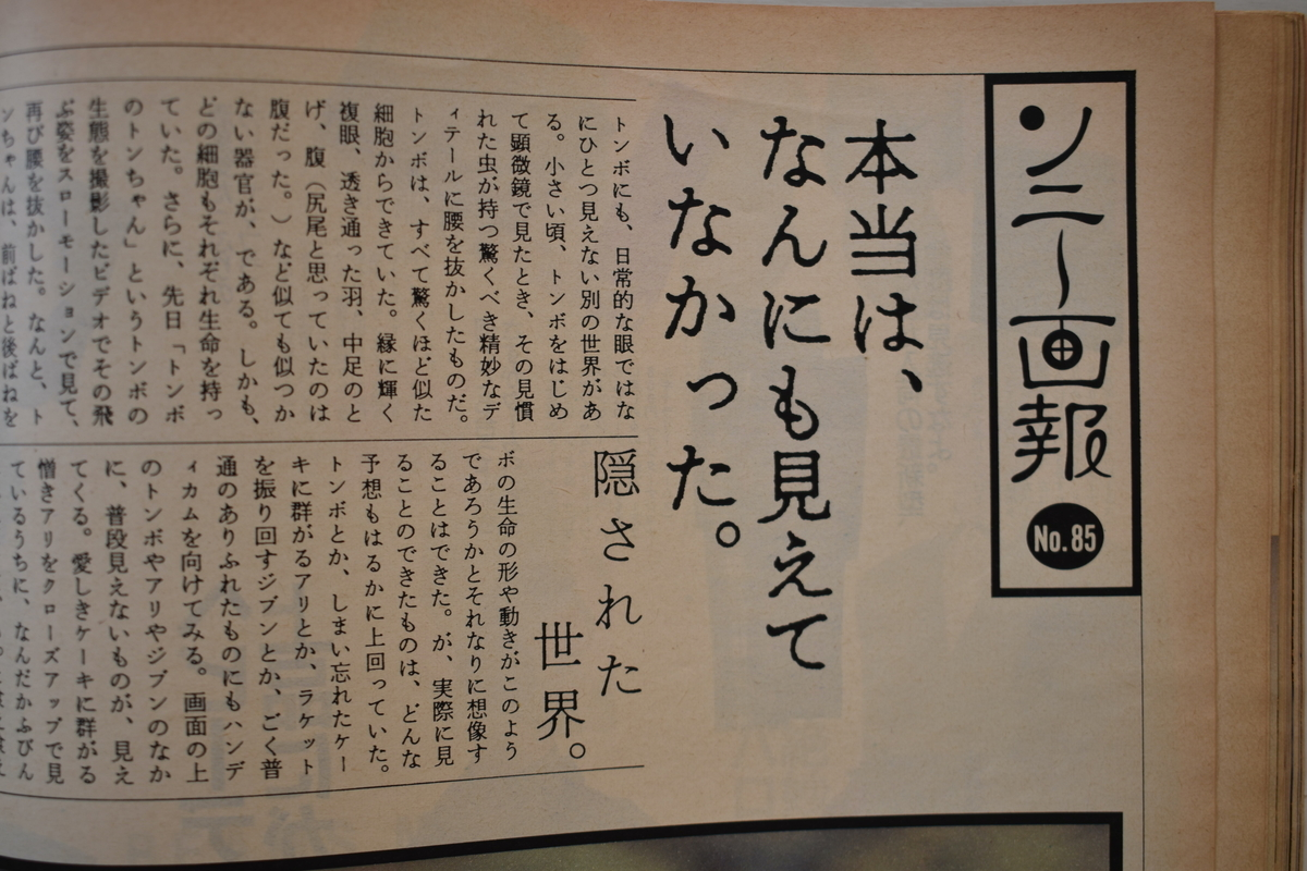 f:id:yamada0221:20210414102647j:plain