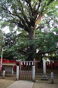 f:id:yamada0807:20170514151907j:plain