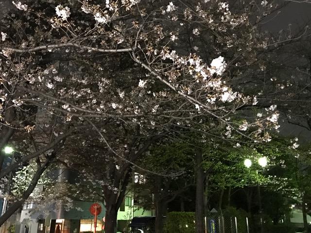 f:id:yamadabushi:20170405212917j:plain