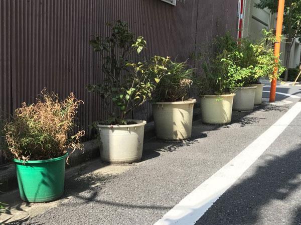 f:id:yamadabushi:20170905211248j:plain