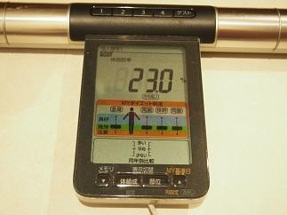 f:id:yamadaeisaku:20200528031048j:plain