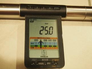 f:id:yamadaeisaku:20200529040401j:plain
