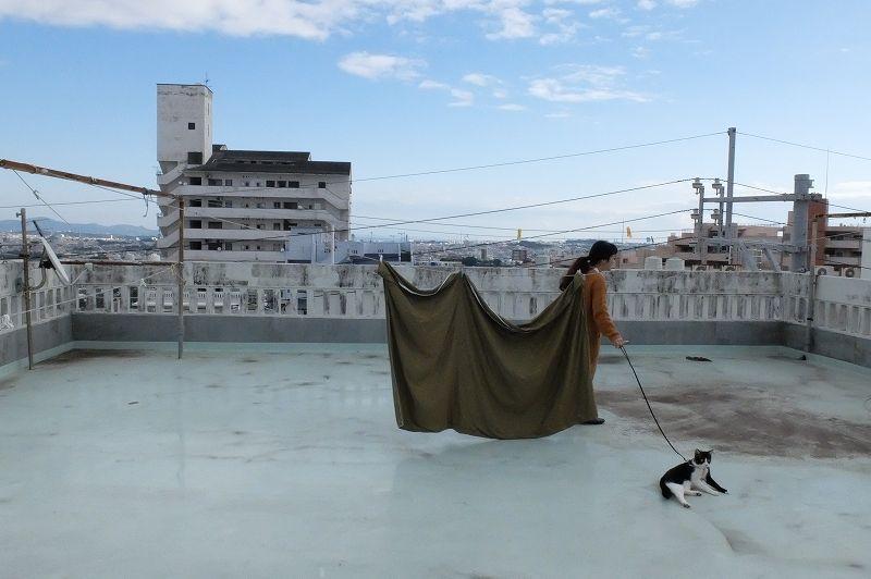 屋上のアイバサンとナコ