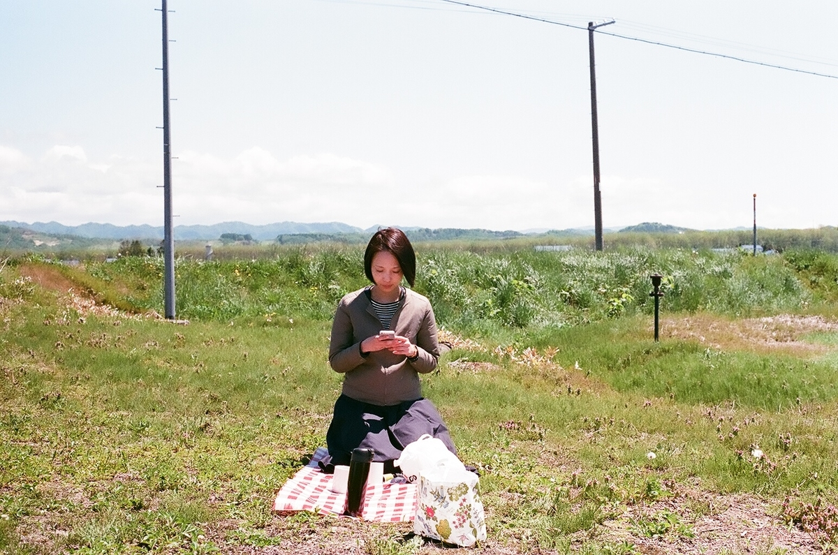 ピクニックの写真