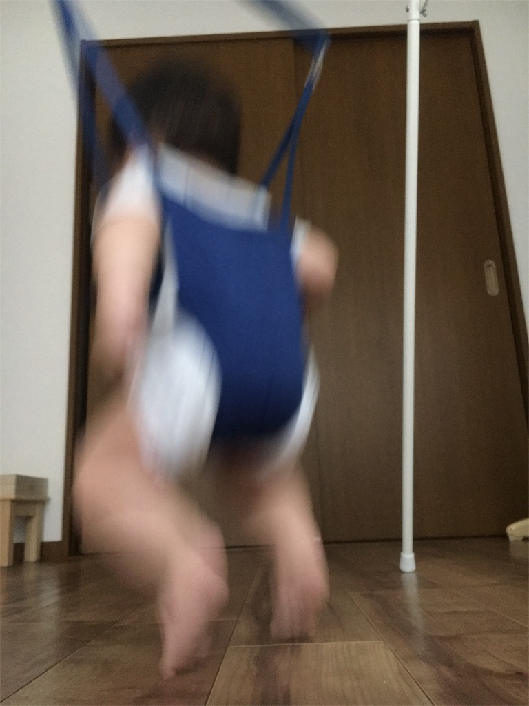 f:id:yamadake-waiwai:20170625063852j:image