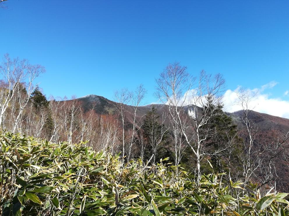 f:id:yamadaken1:20191112211617j:plain
