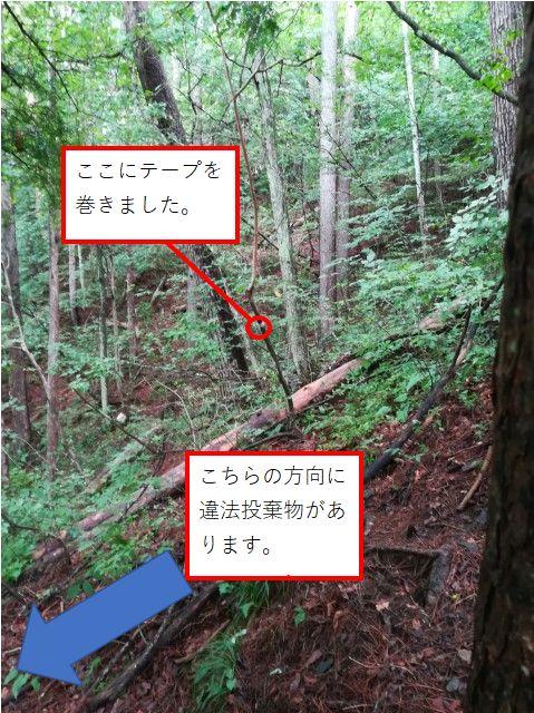 f:id:yamadaken1:20210731145217j:plain