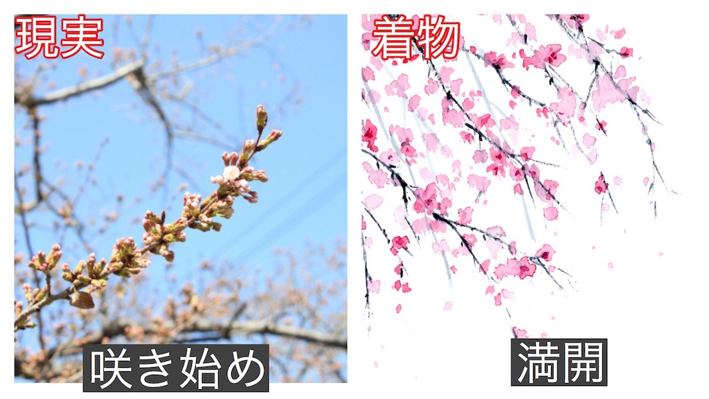 f:id:yamadanami:20201205071508j:image