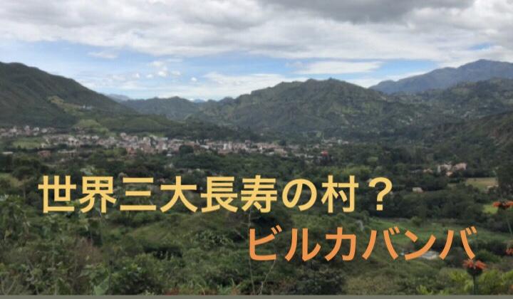 f:id:yamadaru77:20190516125032j:plain