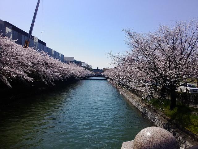 平安神宮の横の川