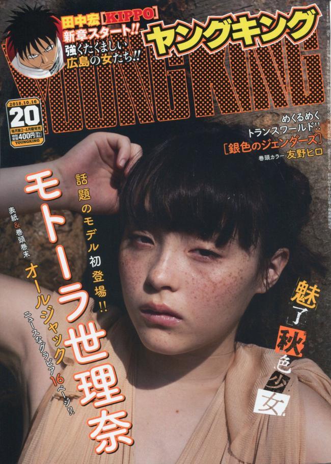 f:id:yamadatakasi:20180927175101j:plain