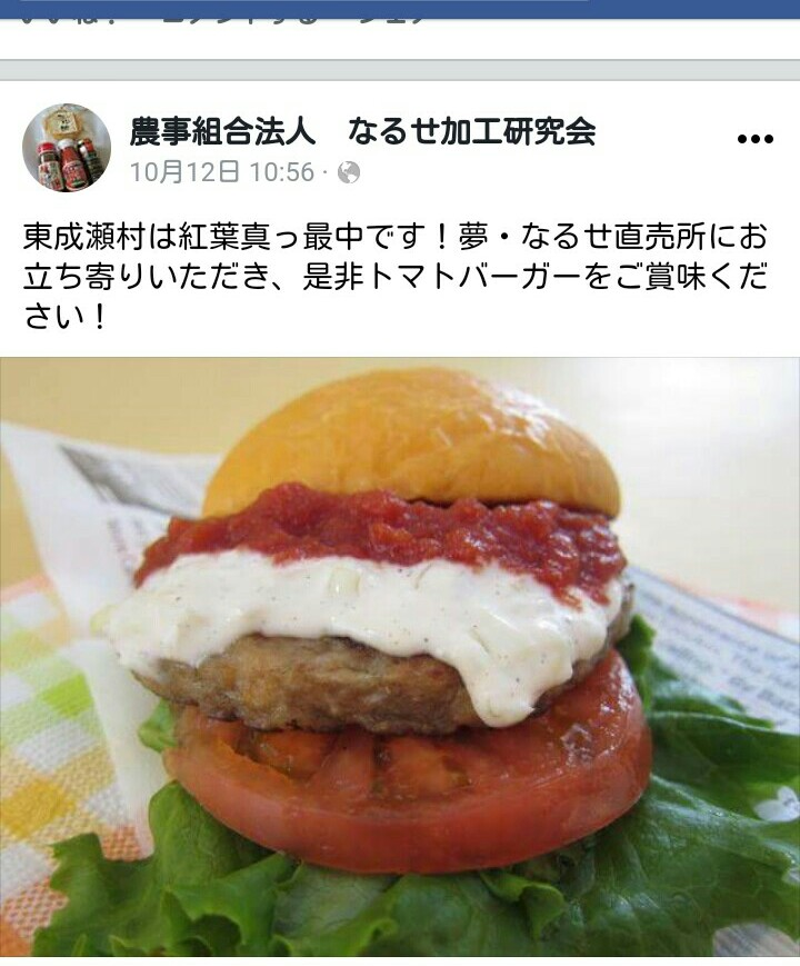 f:id:yamadayukonet:20171016091422j:plain